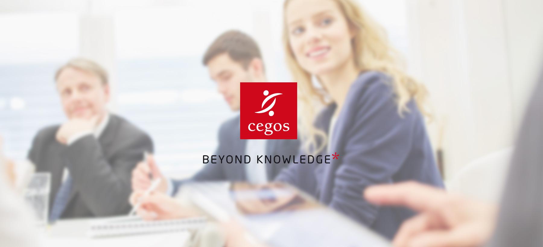Directeur artistique freelance - CEGOS - Site internet